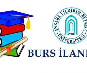 Burs – USA – The AU Emerging Global Leader Scholarship